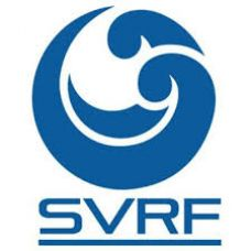 SVRF BLUE E-LIQUID 60ML